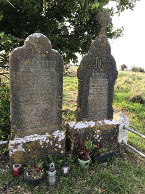 Templebreedy 1882 O'Driscoll William
