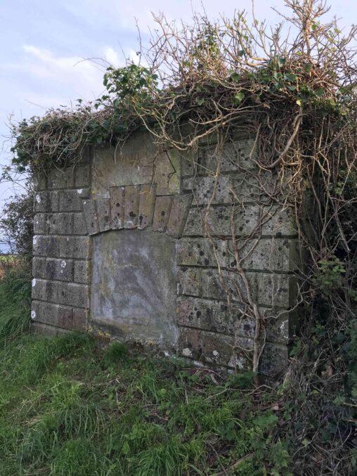 Templebreedy Coghlan Family Tomb